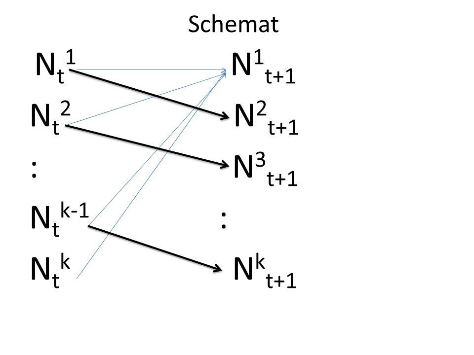 Schemat N t 1 N 1 t+1 N t 2 N 2 t+1 : N 3 t+1 N t k-1 : N t k N k t+1