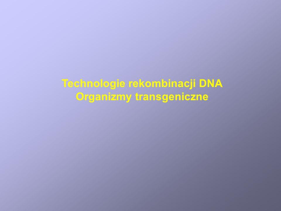 Technologie rekombinacji DNA Organizmy transgeniczne