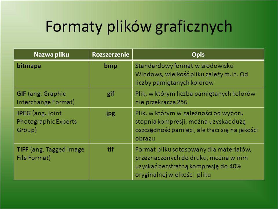 Formaty plików graficznych Nazwa plikuRozszerzenieOpis bitmapabmpStandardowy format w środowisku Windows, wielkość pliku zależy m.in.