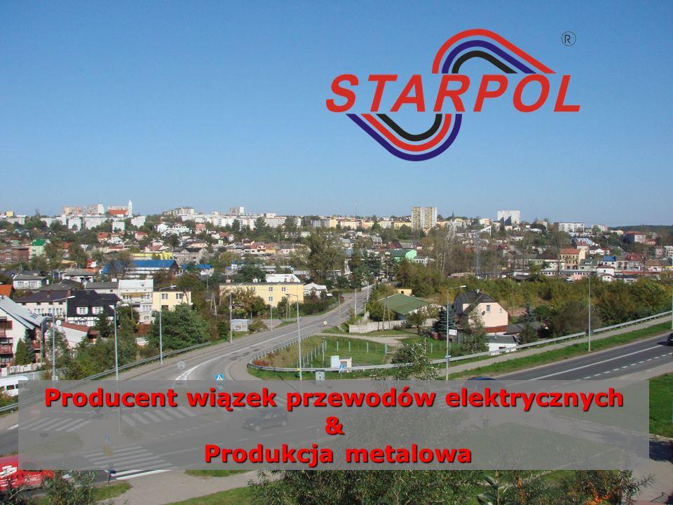 Producent wiązek przewodów elektrycznych & Produkcja metalowa