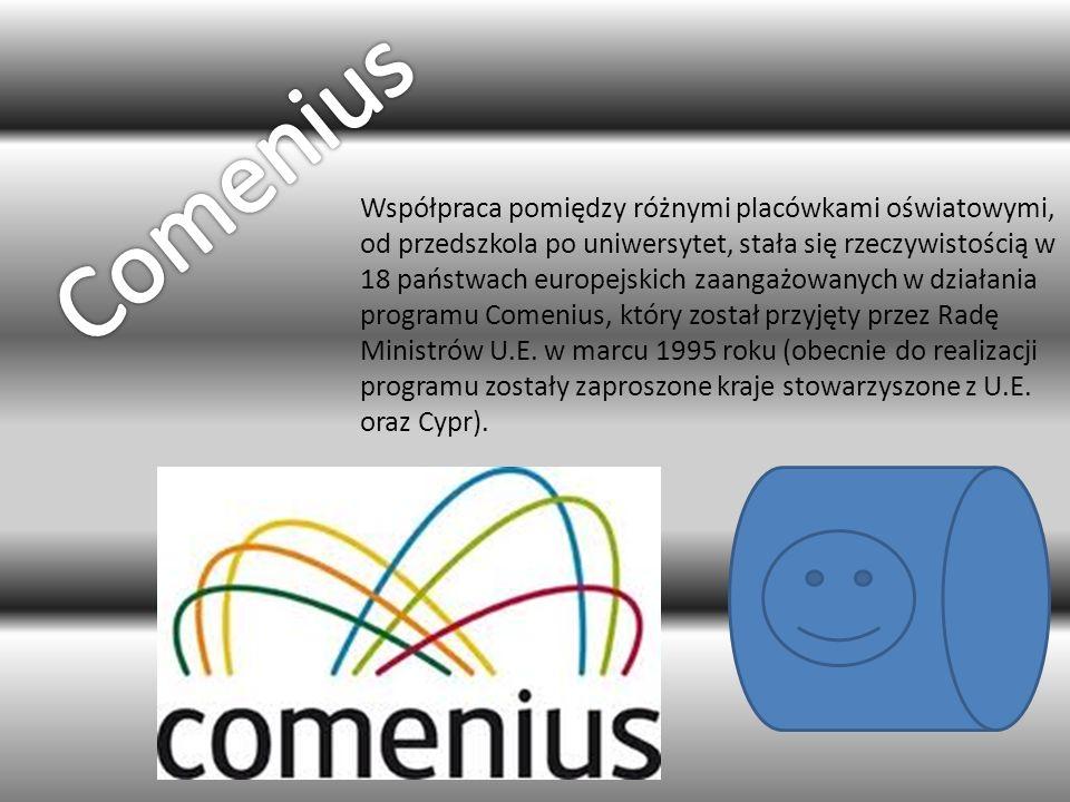 Współpraca pomiędzy różnymi placówkami oświatowymi, od przedszkola po uniwersytet, stała się rzeczywistością w 18 państwach europejskich zaangażowanych w działania programu Comenius, który został przyjęty przez Radę Ministrów U.E.
