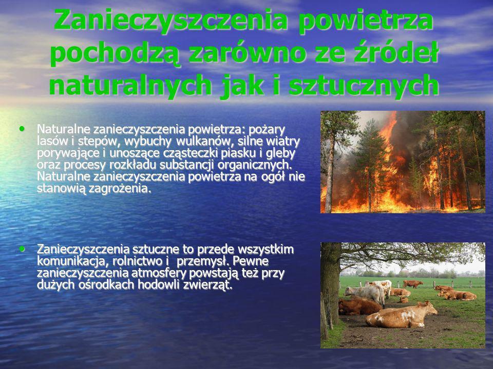 Zanieczyszczenia powietrza pochodzą zarówno ze źródeł naturalnych jak i sztucznych Naturalne zanieczyszczenia powietrza: pożary lasów i stepów, wybuch