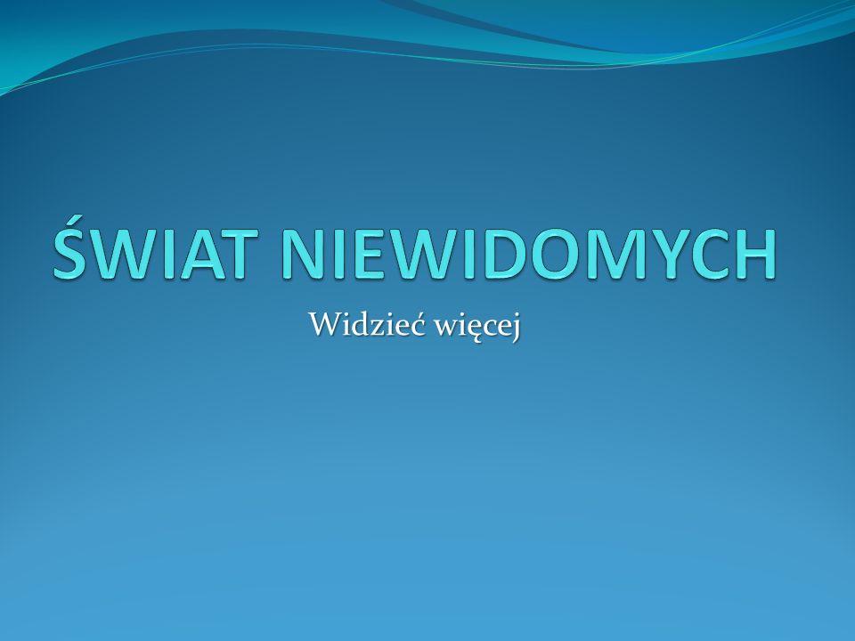 Podziękowania P.Kacprzyk (nauczyciel, ośrodek w Laskach) P.