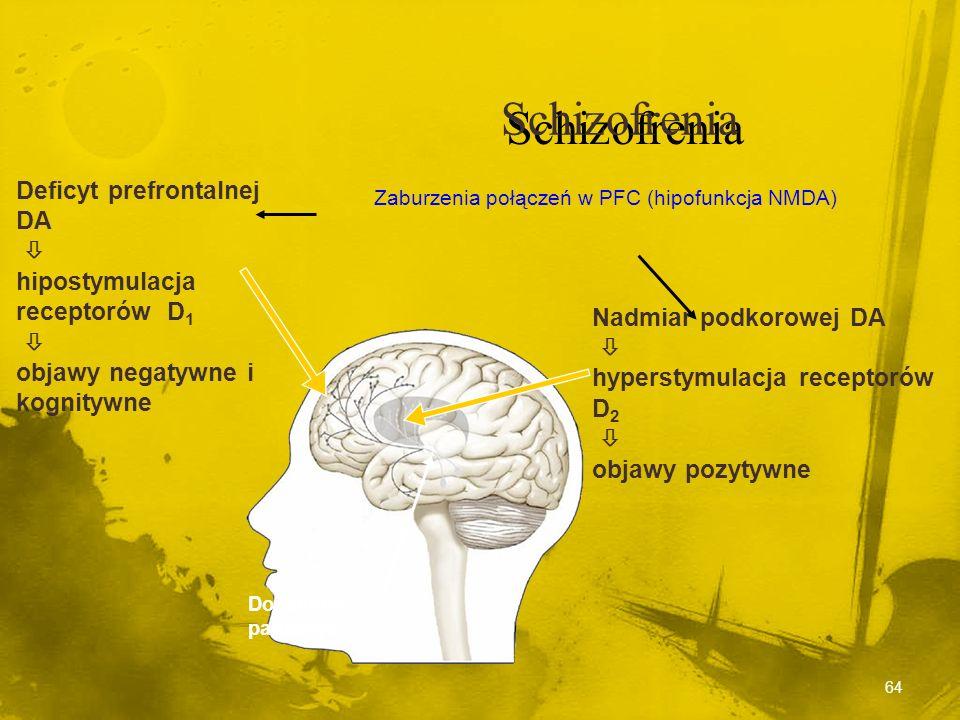 Leczenie Leczenie Neuroleptyki blokują receptory DA Neuroleptyki blokują receptory DA Redukcja objawów schizofrenii Redukcja objawów schizofrenii Amfe