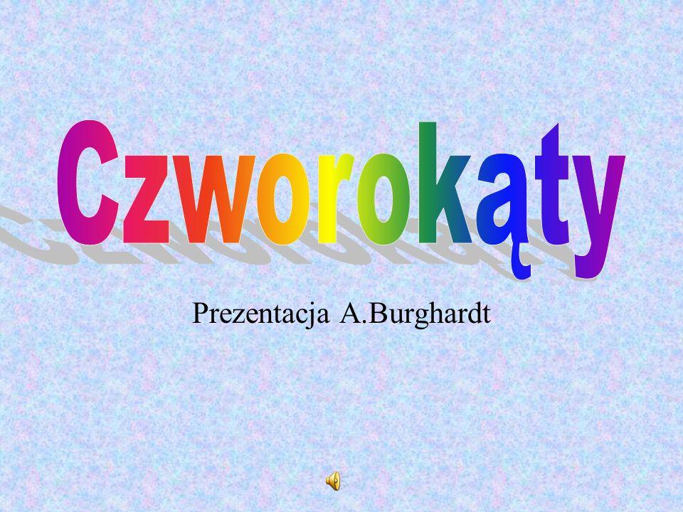 Prezentacja A.Burghardt