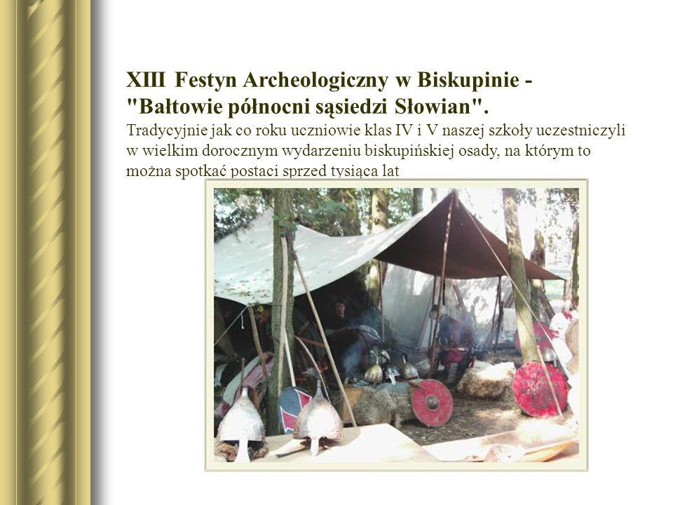 XIII Festyn Archeologiczny w Biskupinie -