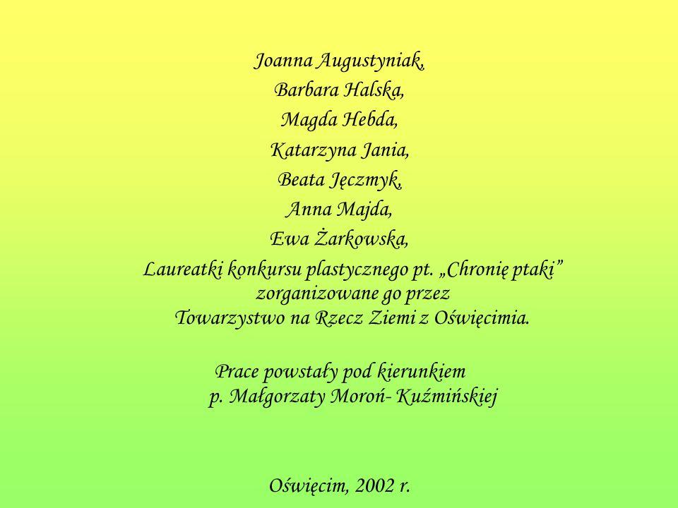 Joanna Augustyniak, Barbara Halska, Magda Hebda, Katarzyna Jania, Beata Jęczmyk, Anna Majda, Ewa Żarkowska, Laureatki konkursu plastycznego pt.