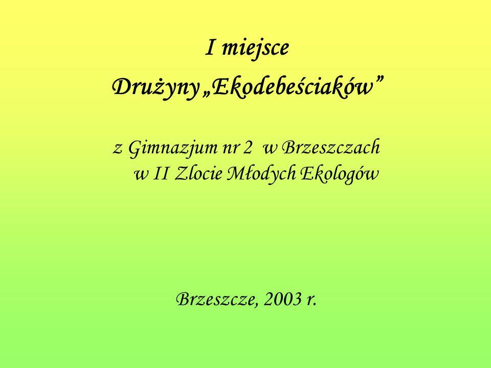 I miejsce Drużyny Ekodebeściaków z Gimnazjum nr 2 w Brzeszczach w II Zlocie Młodych Ekologów Brzeszcze, 2003 r.