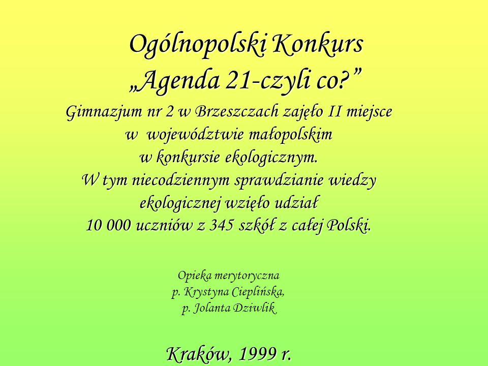 III miejsce grupy Na krawędzi w Powiatowym Turnieju Apeli Ekologicznych Eko- Alarm zorganizowanym w ramach obchodów Dni Ziemi w gminie Brzeszcze Brzeszcze, 2004 r.