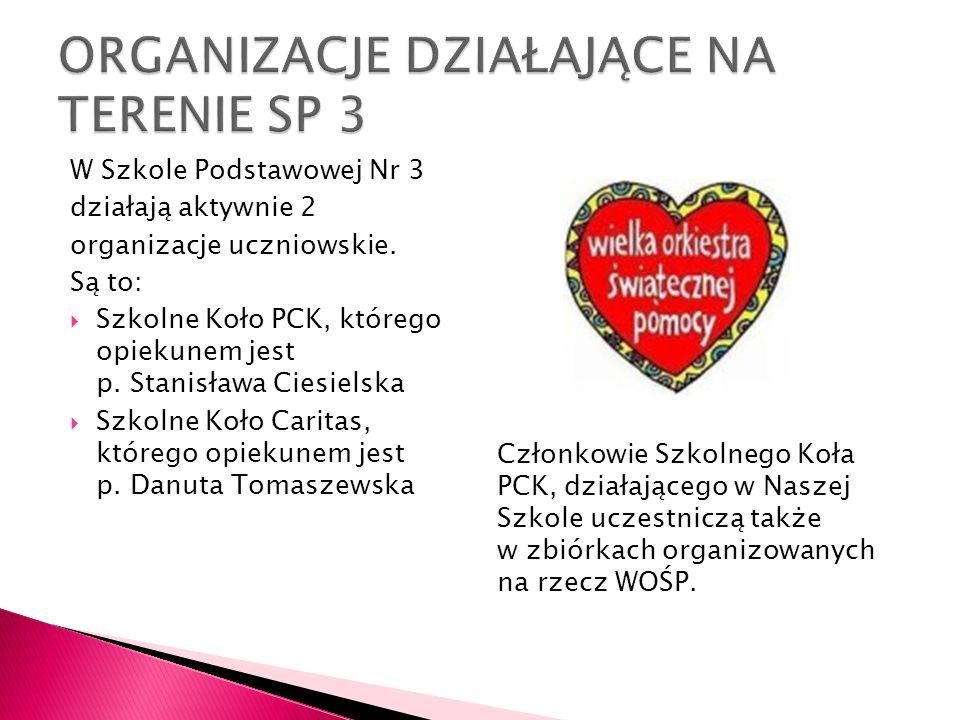 W Szkole Podstawowej Nr 3 działają aktywnie 2 organizacje uczniowskie. Są to: Szkolne Koło PCK, którego opiekunem jest p. Stanisława Ciesielska Szkoln
