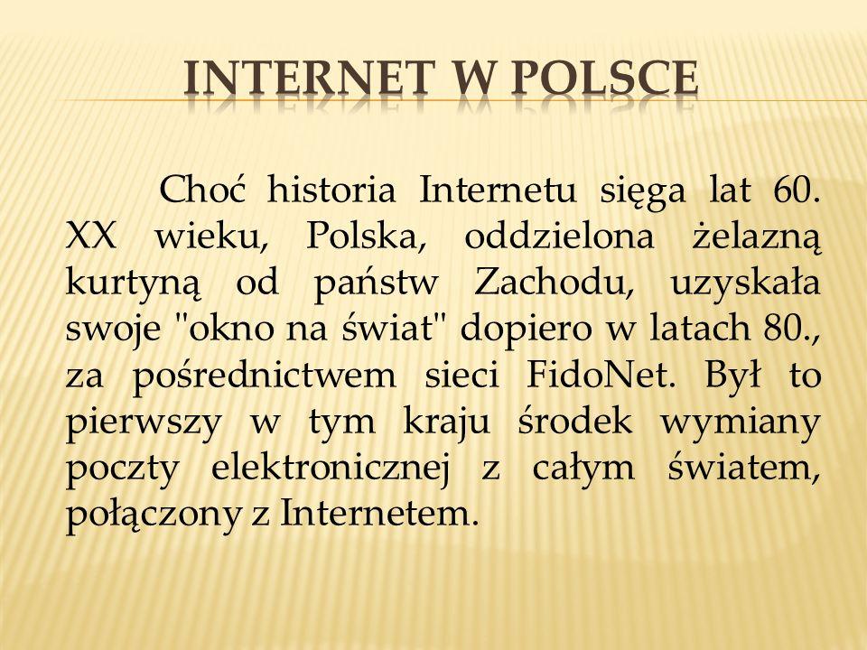 Choć historia Internetu sięga lat 60. XX wieku, Polska, oddzielona żelazną kurtyną od państw Zachodu, uzyskała swoje