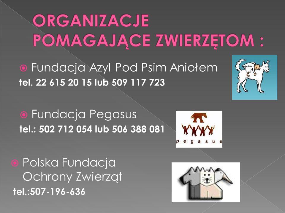 Fundacja Azyl Pod Psim Aniołem tel.