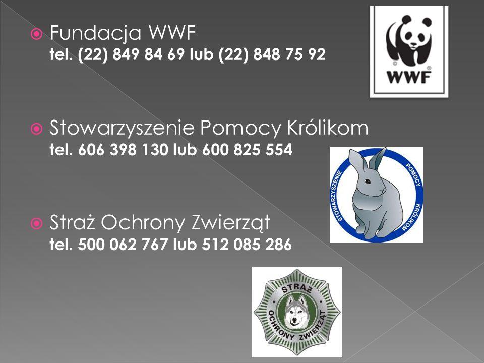 Fundacja WWF tel. (22) 849 84 69 lub (22) 848 75 92 Stowarzyszenie Pomocy Królikom tel.