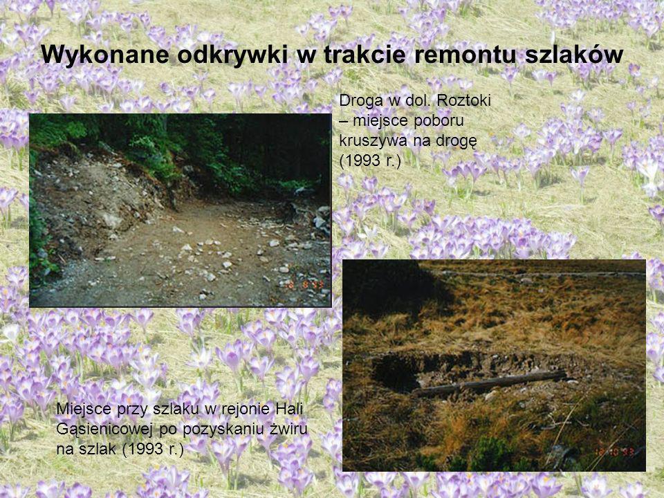 Wykonane odkrywki w trakcie remontu szlaków Droga w dol. Roztoki – miejsce poboru kruszywa na drogę (1993 r.) Miejsce przy szlaku w rejonie Hali Gąsie