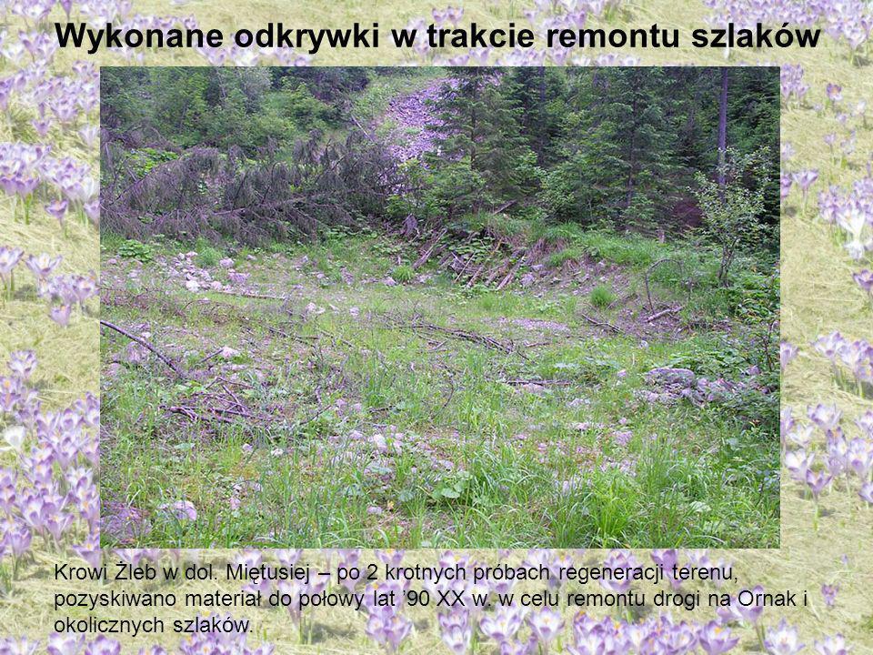 Wykonane odkrywki w trakcie remontu szlaków Krowi Żleb w dol. Miętusiej – po 2 krotnych próbach regeneracji terenu, pozyskiwano materiał do połowy lat