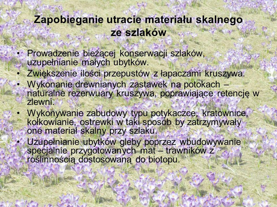 Zapobieganie utracie materiału skalnego ze szlaków Prowadzenie bieżącej konserwacji szlaków, uzupełnianie małych ubytków. Zwiększenie ilości przepustó