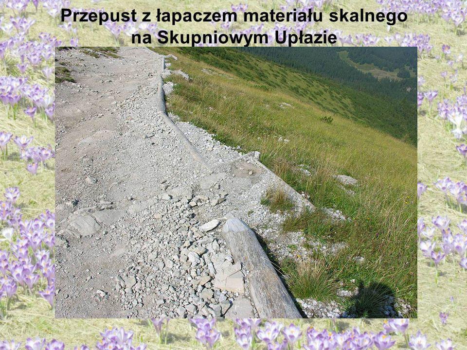 Przepust z łapaczem materiału skalnego na Skupniowym Upłazie