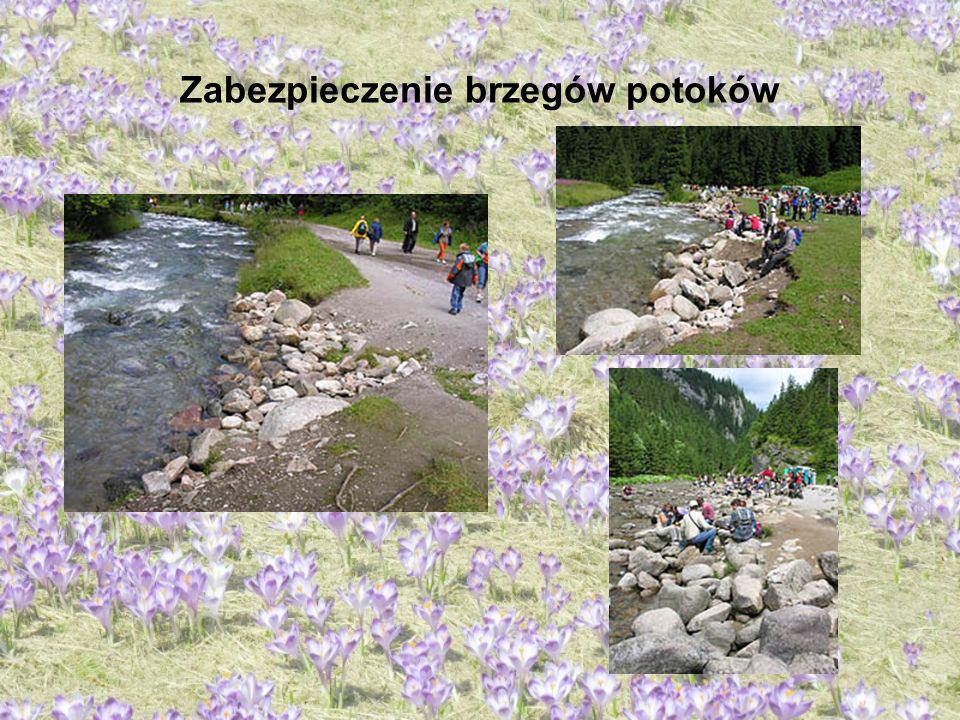 Zabezpieczenie brzegów potoków