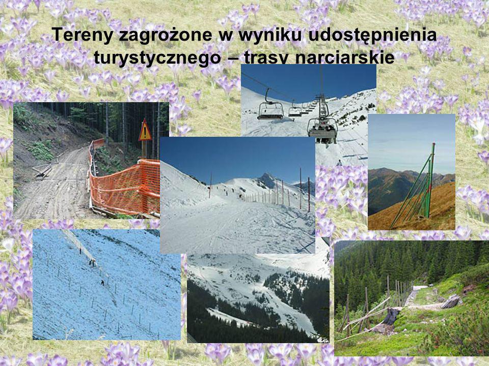 Tereny zagrożone w wyniku udostępnienia turystycznego – trasy narciarskie