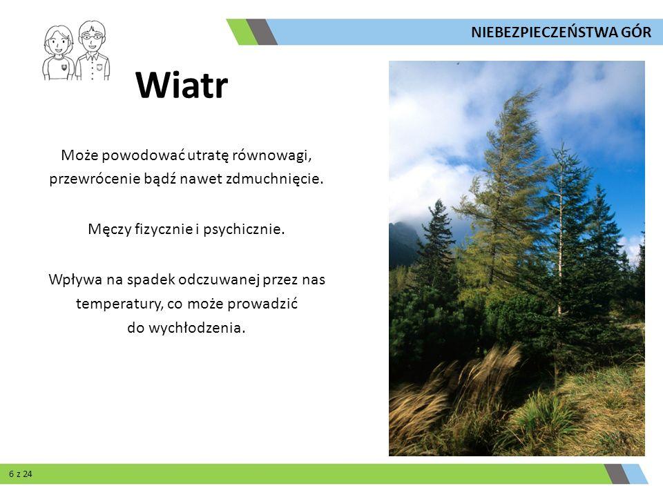 Wiatr Jest czynnikiem lawinotwórczym, powoduje powstawanie nawisów oraz poduszek śnieżnych.