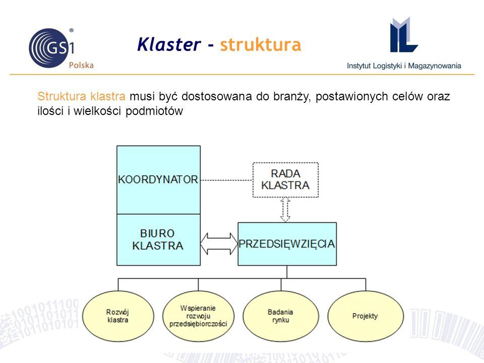 Klaster - struktura Struktura klastra musi być dostosowana do branży, postawionych celów oraz ilości i wielkości podmiotów