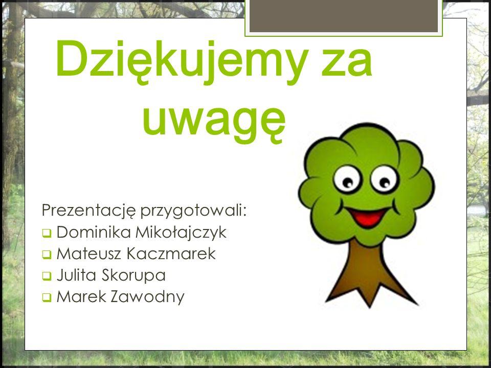 Dziękujemy za uwagę Prezentację przygotowali: Dominika Mikołajczyk Mateusz Kaczmarek Julita Skorupa Marek Zawodny