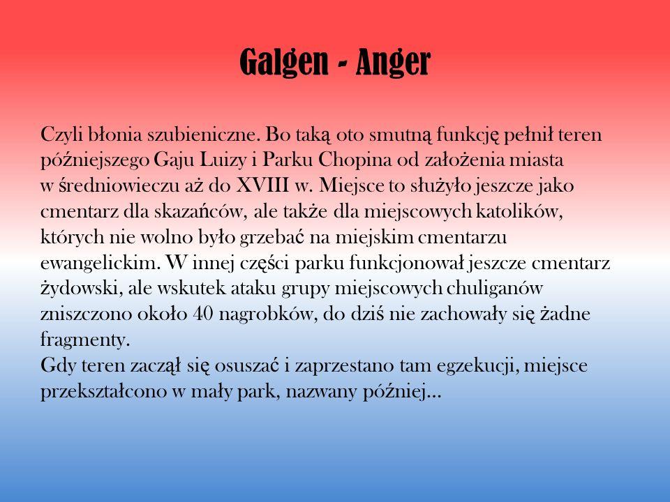 Galgen - Anger Czyli b ł onia szubieniczne.
