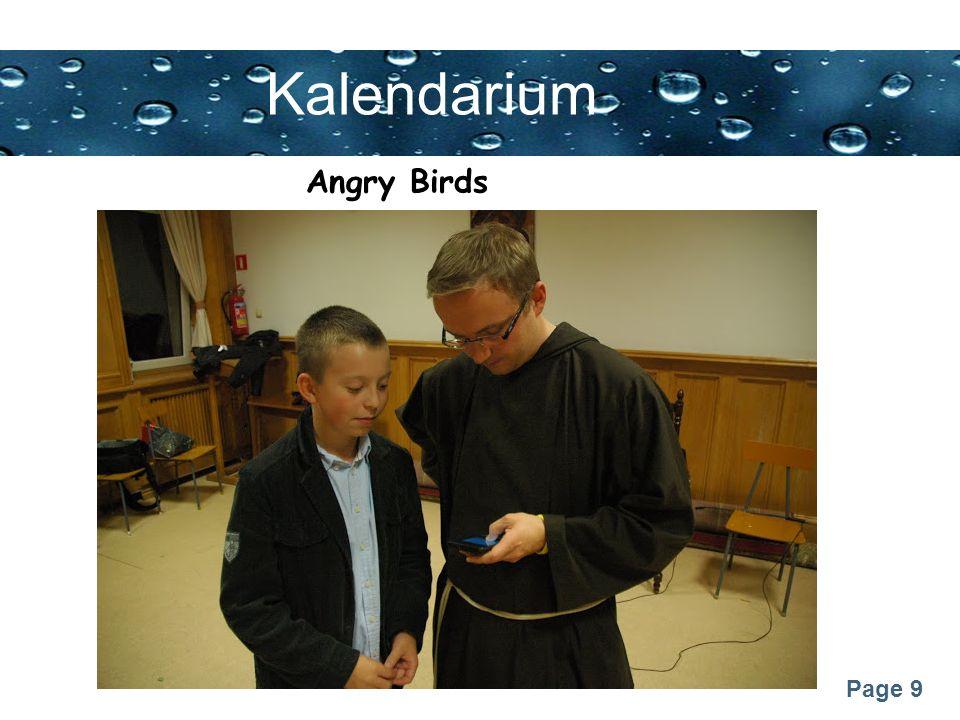 Page 9 Kalendarium Angry Birds