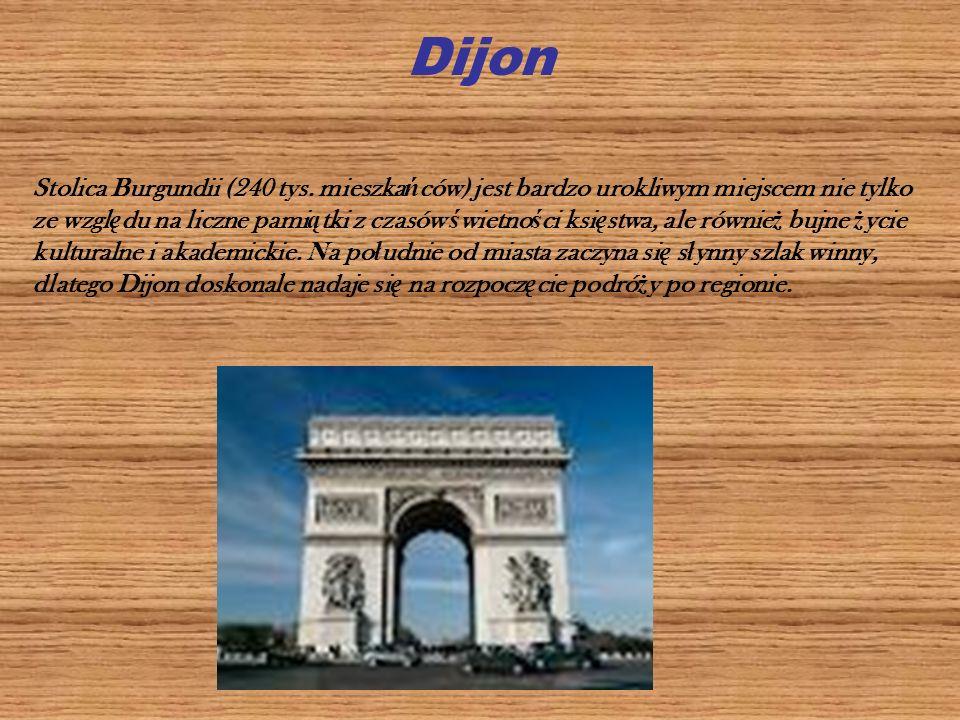Dijon Stolica Burgundii (240 tys. mieszka ń ców) jest bardzo urokliwym miejscem nie tylko ze wzgl ę du na liczne pami ą tki z czasów ś wietno ś ci ksi