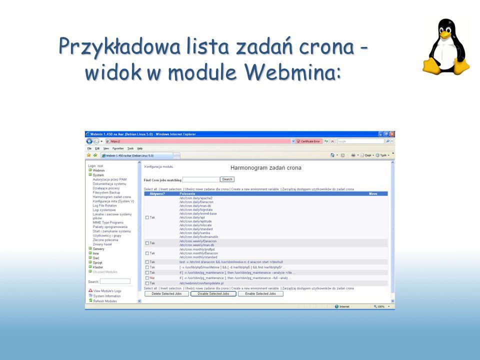 Przykładowa lista zadań crona - widok w module Webmina: