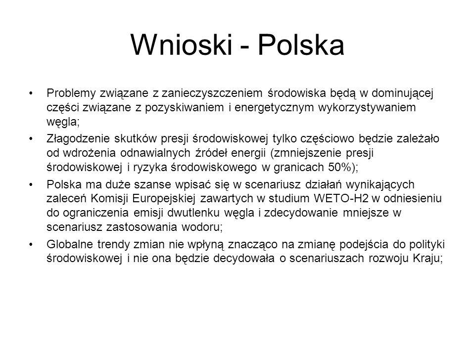Wnioski - Polska Problemy związane z zanieczyszczeniem środowiska będą w dominującej części związane z pozyskiwaniem i energetycznym wykorzystywaniem