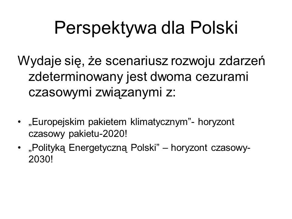 Wnioski - Polska Problemy związane z zanieczyszczeniem środowiska będą w dominującej części związane z pozyskiwaniem i energetycznym wykorzystywaniem węgla; Złagodzenie skutków presji środowiskowej tylko częściowo będzie zależało od wdrożenia odnawialnych źródeł energii (zmniejszenie presji środowiskowej i ryzyka środowiskowego w granicach 50%); Polska ma duże szanse wpisać się w scenariusz działań wynikających zaleceń Komisji Europejskiej zawartych w studium WETO-H2 w odniesieniu do ograniczenia emisji dwutlenku węgla i zdecydowanie mniejsze w scenariusz zastosowania wodoru; Globalne trendy zmian nie wpłyną znacząco na zmianę podejścia do polityki środowiskowej i nie ona będzie decydowała o scenariuszach rozwoju Kraju;