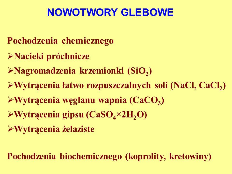NOWOTWORY GLEBOWE Pochodzenia chemicznego Nacieki próchnicze Nagromadzenia krzemionki (SiO 2 ) Wytrącenia łatwo rozpuszczalnych soli (NaCl, CaCl 2 ) W