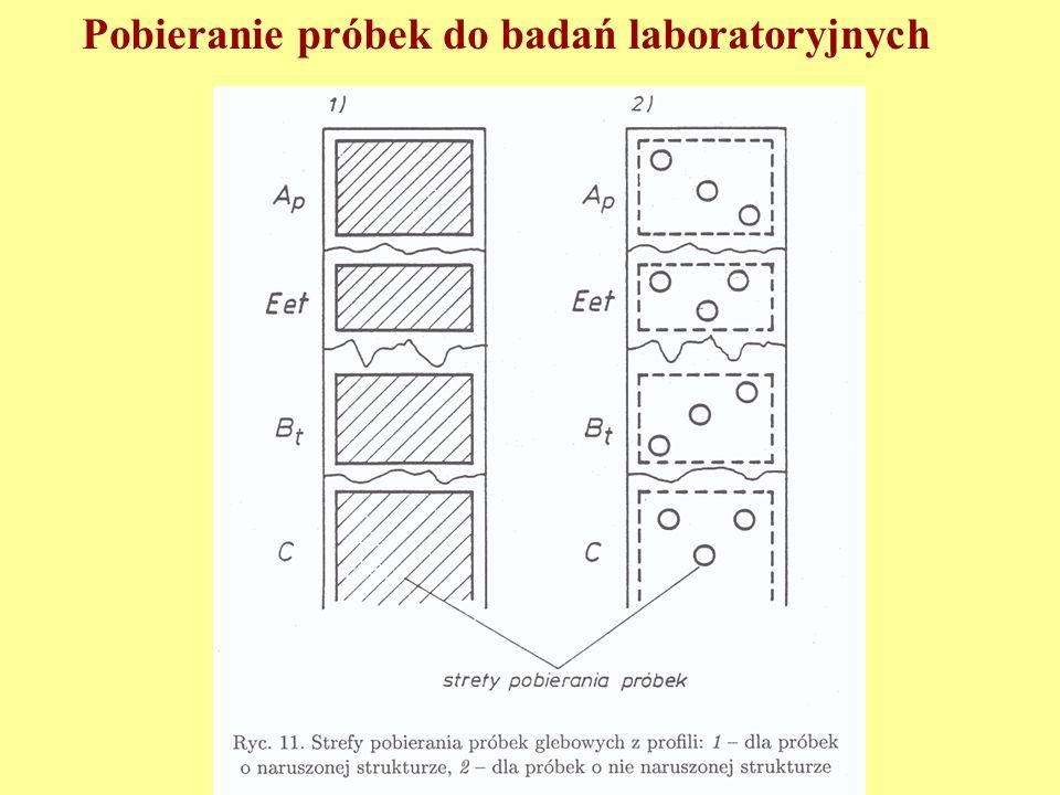 Pobieranie próbek do badań laboratoryjnych