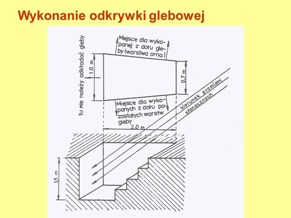 Kryteria wyboru miejsca wykonania odkrywki glebowej - Reprezentatywność miejsca opróbowania - Oddalenie od dróg, rowów, budynków - Odpowiednia głębokość gwarantująca odsłonięcie wszystkich poziomów genetycznych (na ogół do 150-200 cm)