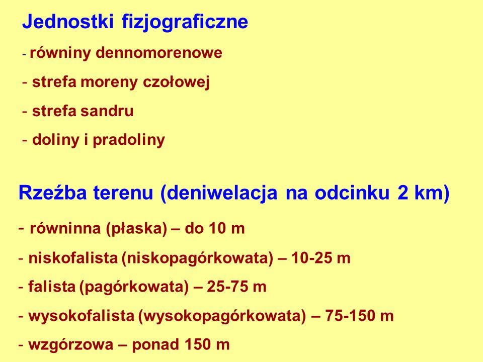 Jednostki fizjograficzne - równiny dennomorenowe - strefa moreny czołowej - strefa sandru - doliny i pradoliny Rzeźba terenu (deniwelacja na odcinku 2