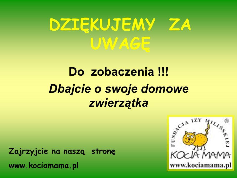 DZIĘKUJEMY ZA UWAGĘ Do zobaczenia !!! Dbajcie o swoje domowe zwierzątka Zajrzyjcie na naszą stronę www.kociamama.pl
