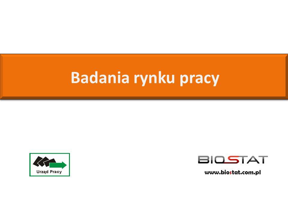 Badania rynku pracy www.biostat.com.pl