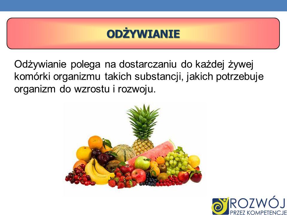 Odżywianie polega na dostarczaniu do każdej żywej komórki organizmu takich substancji, jakich potrzebuje organizm do wzrostu i rozwoju. ODŻYWIANIE