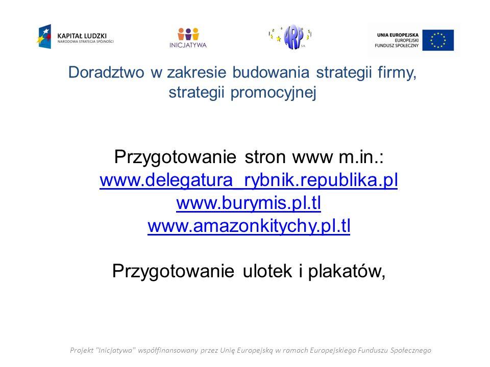Doradztwo w zakresie budowania strategii firmy, strategii promocyjnej Przygotowanie stron www m.in.: www.delegatura_rybnik.republika.pl www.burymis.pl.tl www.amazonkitychy.pl.tl Przygotowanie ulotek i plakatów, Projekt Inicjatywa współfinansowany przez Unię Europejską w ramach Europejskiego Funduszu Społecznego