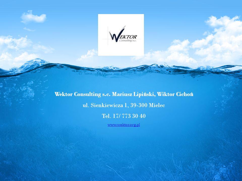 Wektor Consulting s.c. Mariusz Lipi ń ski, Wiktor Cicho ń ul.