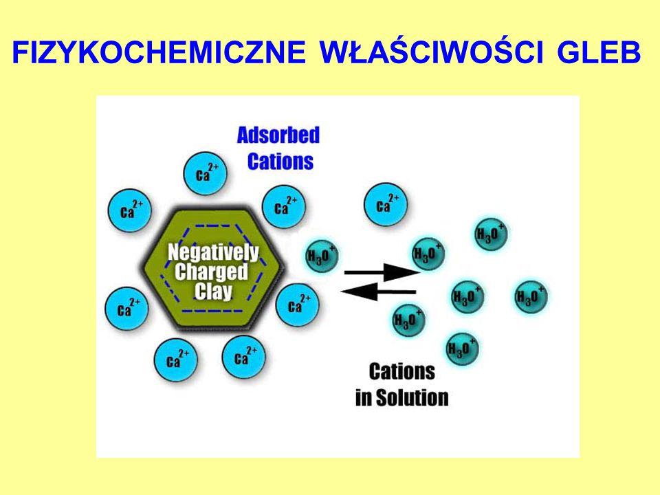 Wpływ pH na wielkość sorpcji Cr(III) pH Sorpcja Cr(III) [%]