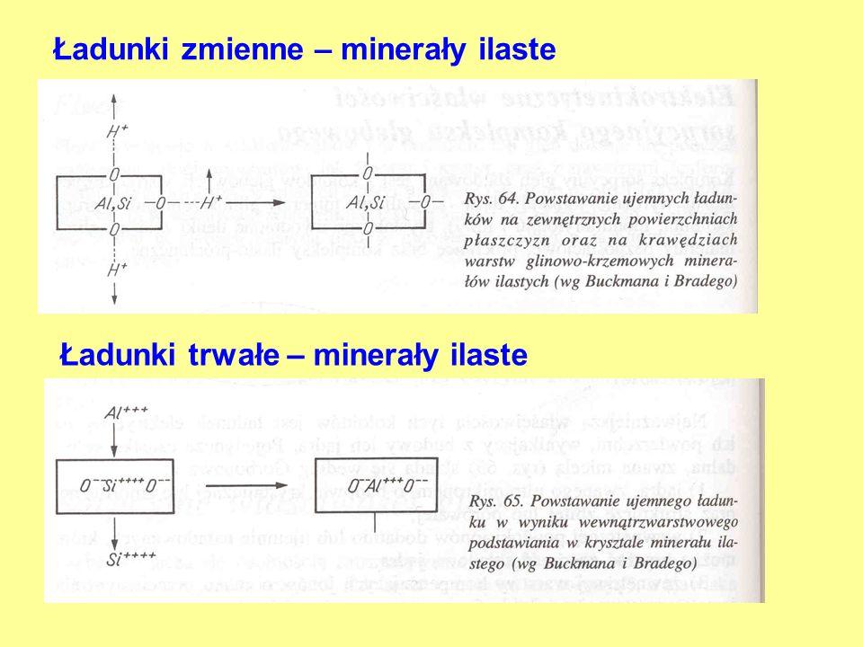 Ładunki zmienne – minerały ilaste Ładunki trwałe – minerały ilaste