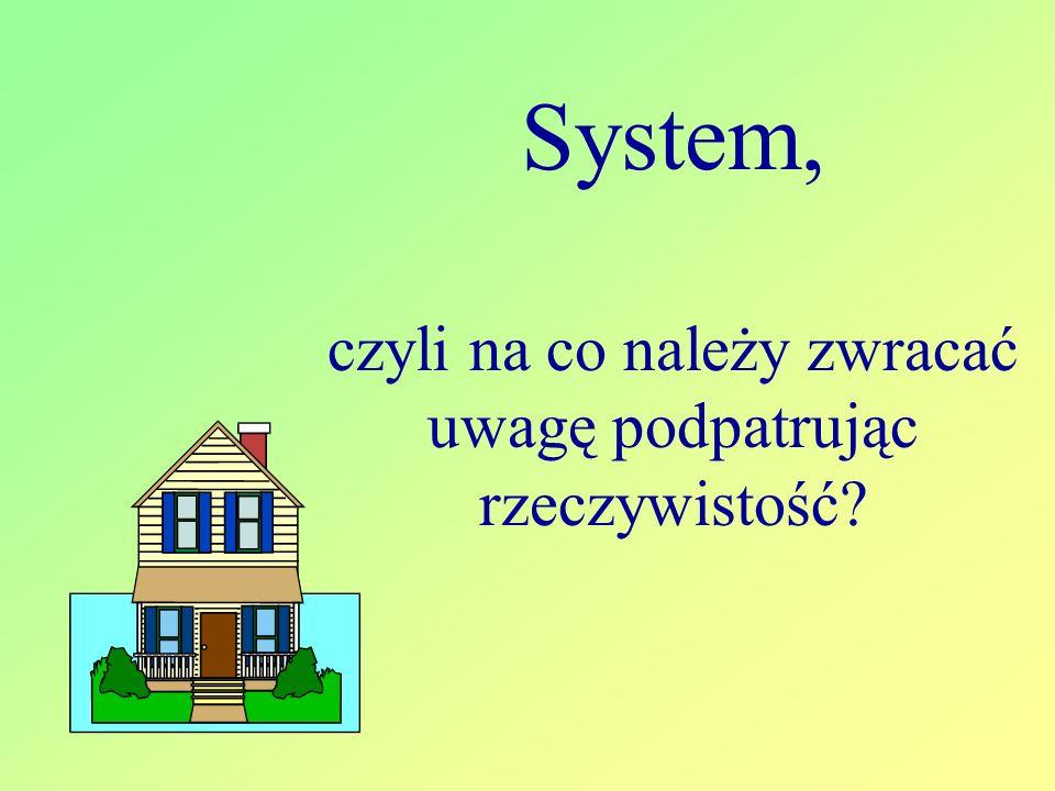 System, czyli na co należy zwracać uwagę podpatrując rzeczywistość?