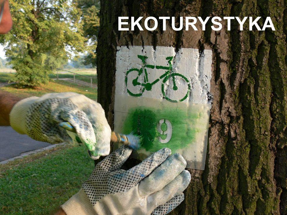 PRODUKT LOKALNY Europejski Fundusz Rozwoju Regionalnego Małopolski Regionalny Program Operacyjny OŚ PRIORYTETOWA 2. GOSPODARKA REGIONALNEJ SZANSY Dzia
