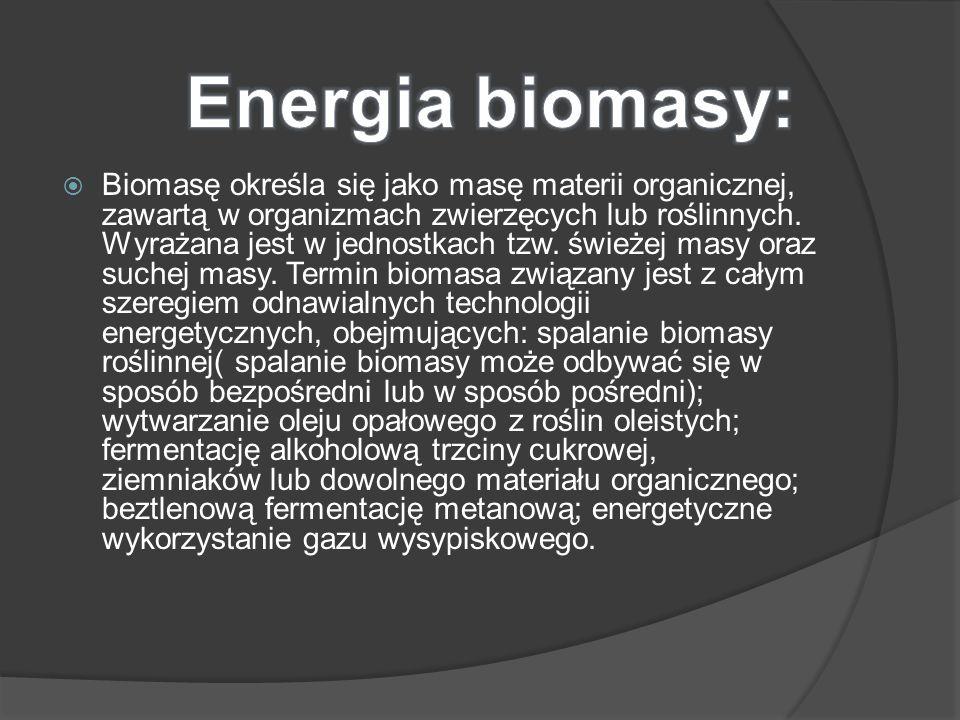 Biomasę określa się jako masę materii organicznej, zawartą w organizmach zwierzęcych lub roślinnych. Wyrażana jest w jednostkach tzw. świeżej masy ora