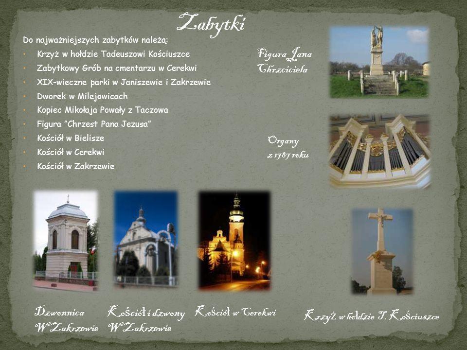 Do najważniejszych zabytków należą: Krzyż w hołdzie Tadeuszowi Kościuszce Zabytkowy Grób na cmentarzu w Cerekwi XIX-wieczne parki w Janiszewie i Zakrz