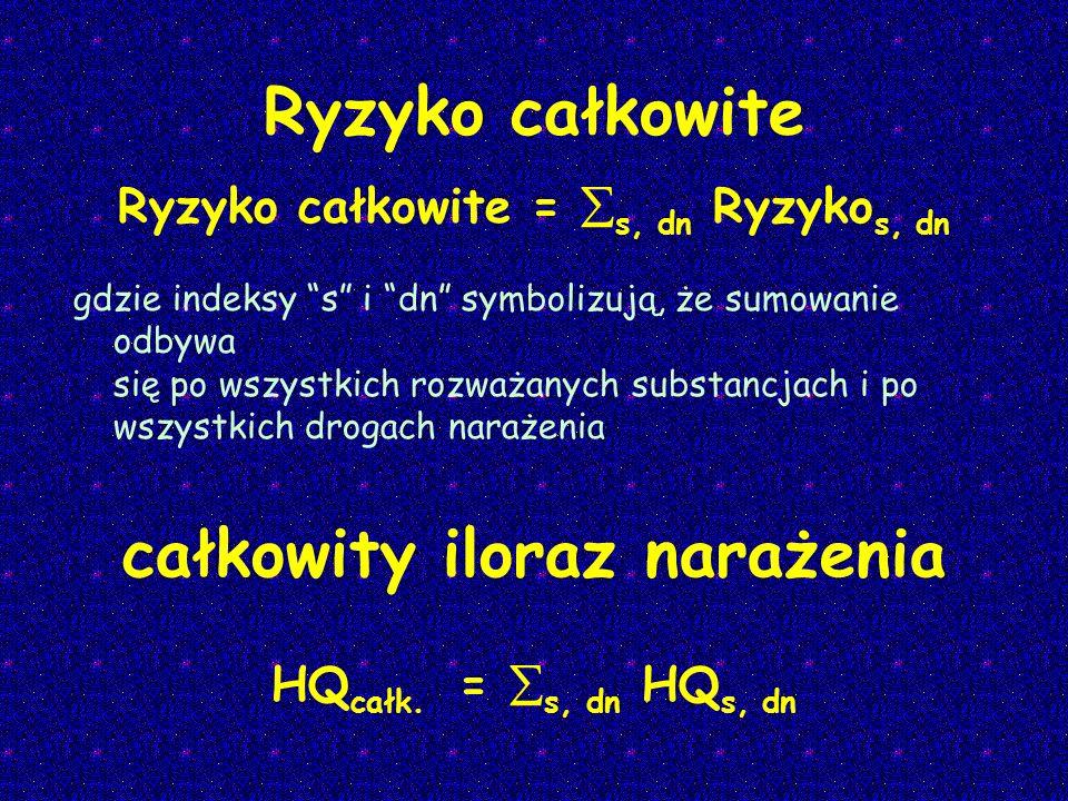 Ryzyko całkowite Ryzyko całkowite = s, dn Ryzyko s, dn gdzie indeksy s i dn symbolizują, że sumowanie odbywa się po wszystkich rozważanych substancjac