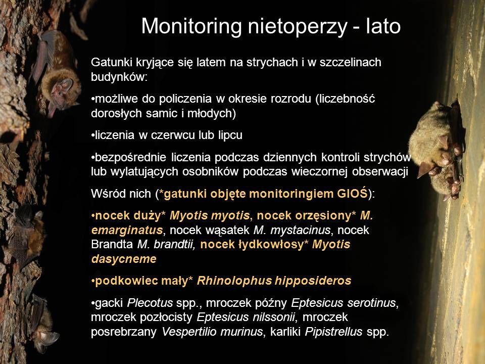 Monitoring nietoperzy - lato Gatunki kryjące się latem w dziuplach drzew i szczelinach pni: niemożliwe do policzenia w prosty i efektywny sposób (metoda znakowania i powtórnych złowień mogłaby pomóc) dostępne wskaźniki populacji ograniczają się do obecności/braku na stanowisku, występowania rozrodu, indeksów aktywności odłowy w sieci nad wodami i na drogach, detektory ultradźwięków Wśród nich (*gatunki objęte monitoringiem GIOŚ): nocek Bechsteina* Myotis bechsteinii, nocek Alkatoe M.