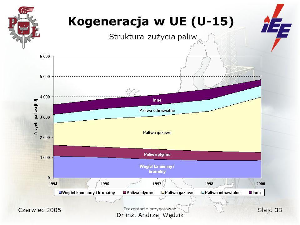 Czerwiec 2005 Prezentację przygotował: Dr inż.